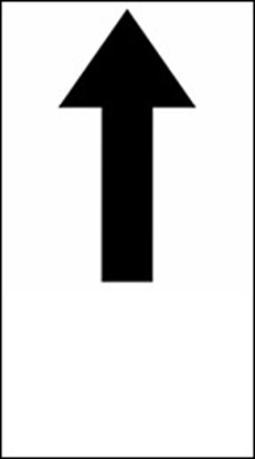 Picture of Straight Through Only Sign